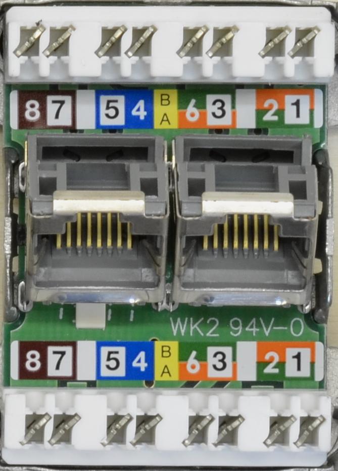 Netzwerkdose anschließen - Der Elektriker